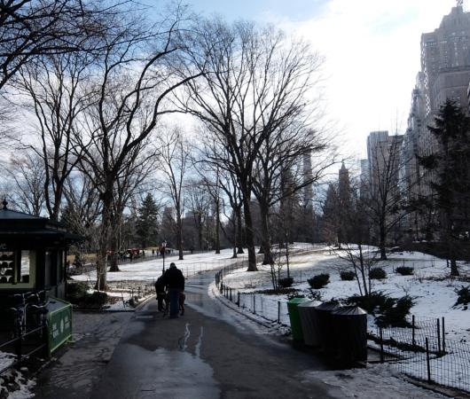 NYのセントラルパーク最南端59丁目沿いをお散歩_b0007805_1271960.jpg