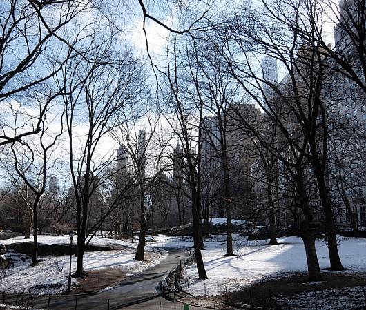 NYのセントラルパーク最南端59丁目沿いをお散歩_b0007805_1274951.jpg