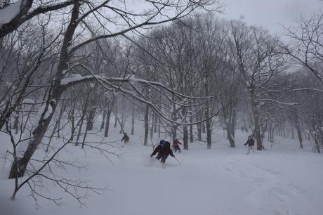 2018年2月10日-12日強風の八甲田滑る_c0242406_10051743.jpg