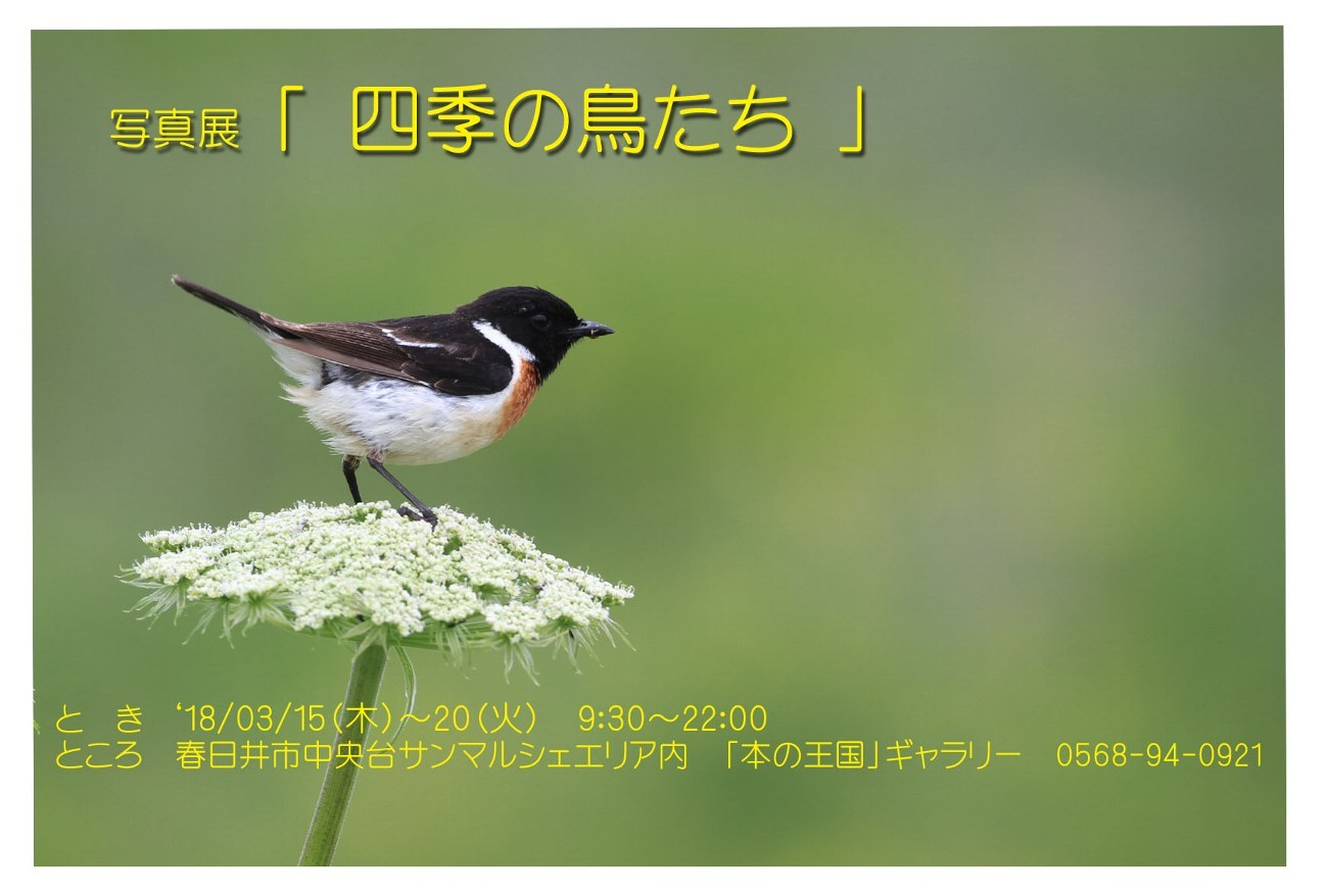 f0349409_17054874.jpg