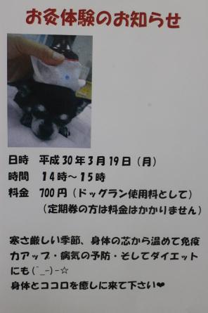 f0170713_18104336.jpg