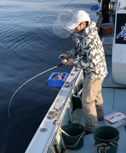 14日・水・16あたりの、15本ゲットの高確率でメガ☆大アジゲットです!(σ・∀・)σ - 愛媛・松山・伊予灘・高速遊漁船 pilarⅢ 海人 本日の釣果