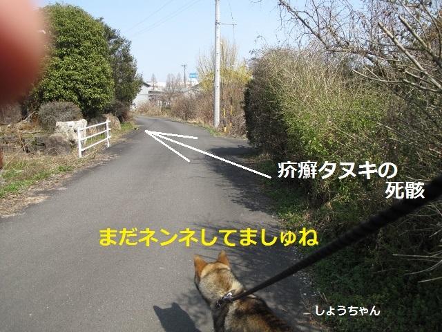 f0143123_10435243.jpg