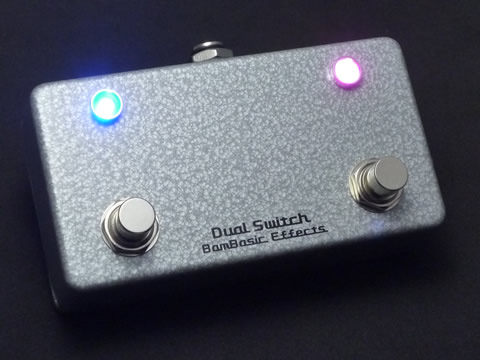 BamBasic:Dual Switch カスタム・オーダー品_f0186957_9185570.jpg