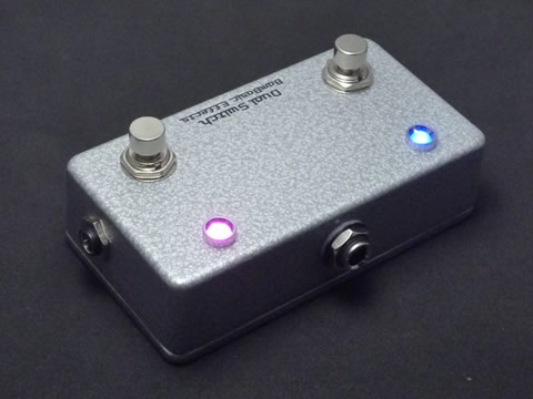 BamBasic:Dual Switch カスタム・オーダー品_f0186957_9191178.jpg