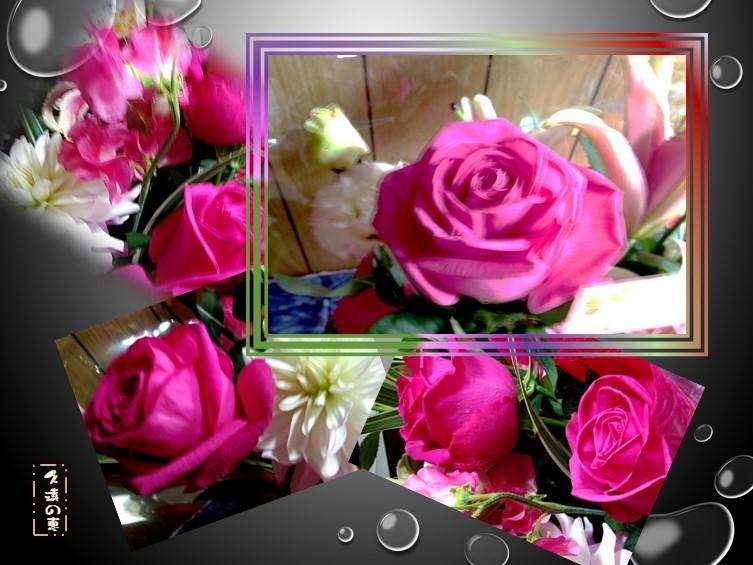 f0214467_08531183.jpg