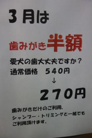 f0170713_18214034.jpg