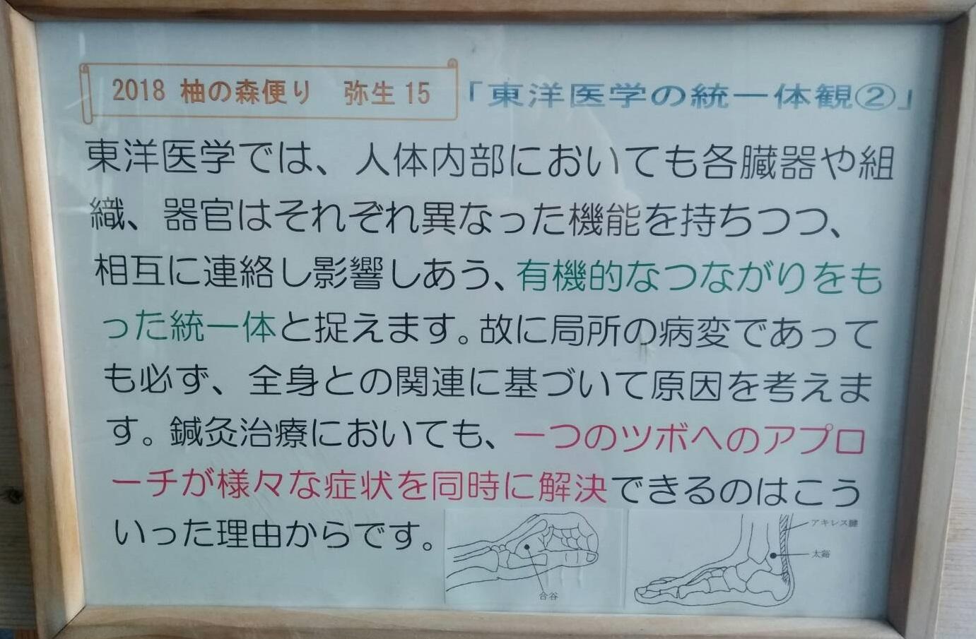 東洋医学の統一体観②_f0354314_10004560.jpg