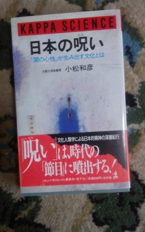 日大、タタリ、呪い、そして「 田中理事長様、早く記者会見して! 」_d0241558_15462036.jpg