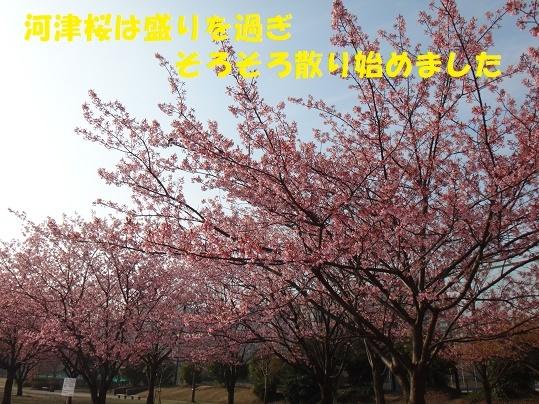 f0121712_08182956.jpg