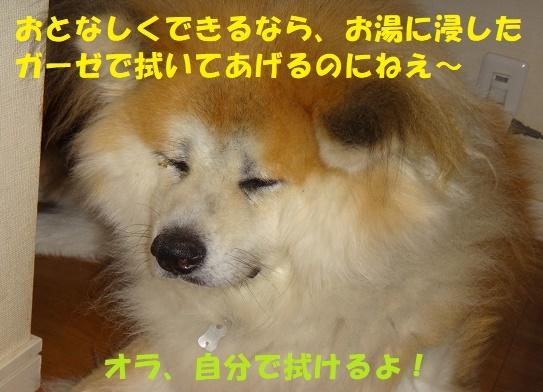 f0121712_23111513.jpg