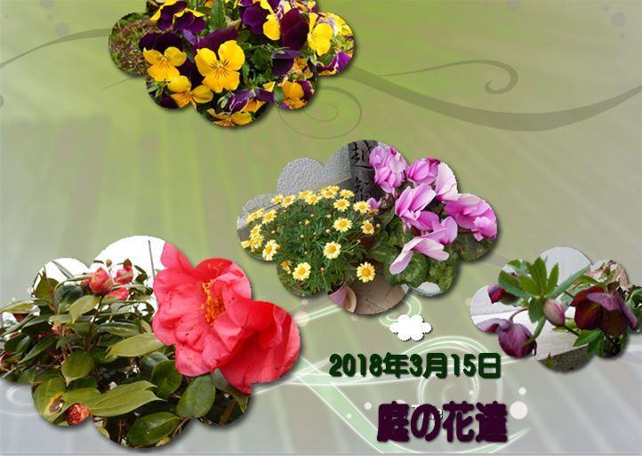 d0254522_10550216.jpg