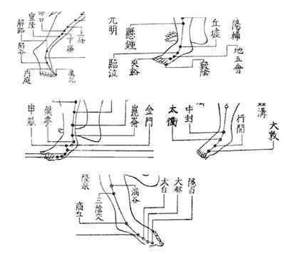 足がつりやすい人は副腎と◯臓を整えましょう 〜ある日の施術より〜_e0073240_16364982.jpg