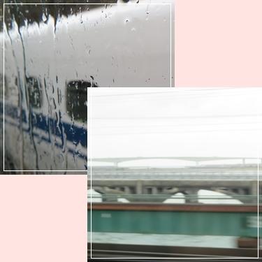 b0254145_16540151.jpg