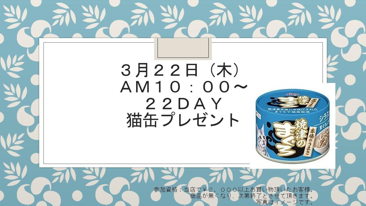 180316 22DAYイベント告知_e0181866_08440454.jpg