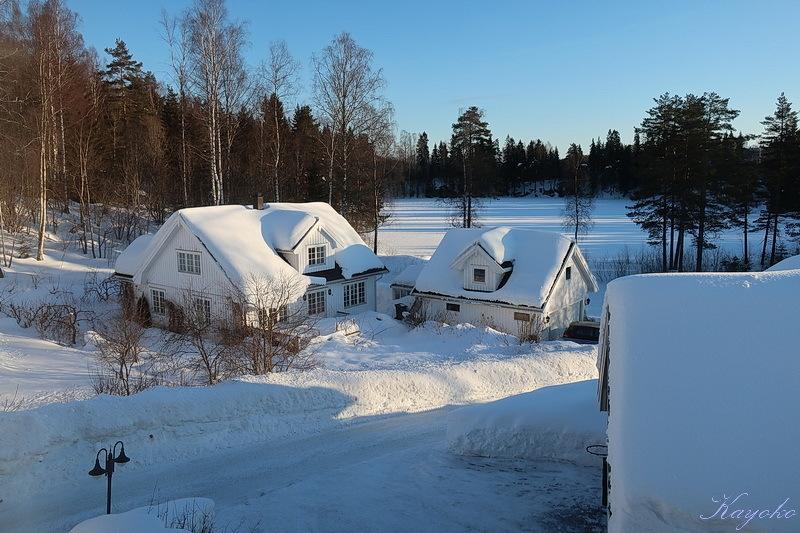 散歩 と 雪かき_a0353839_05230343.jpg