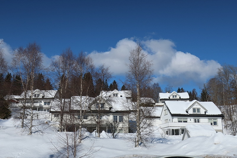 散歩 と 雪かき_a0353839_05245155.jpg