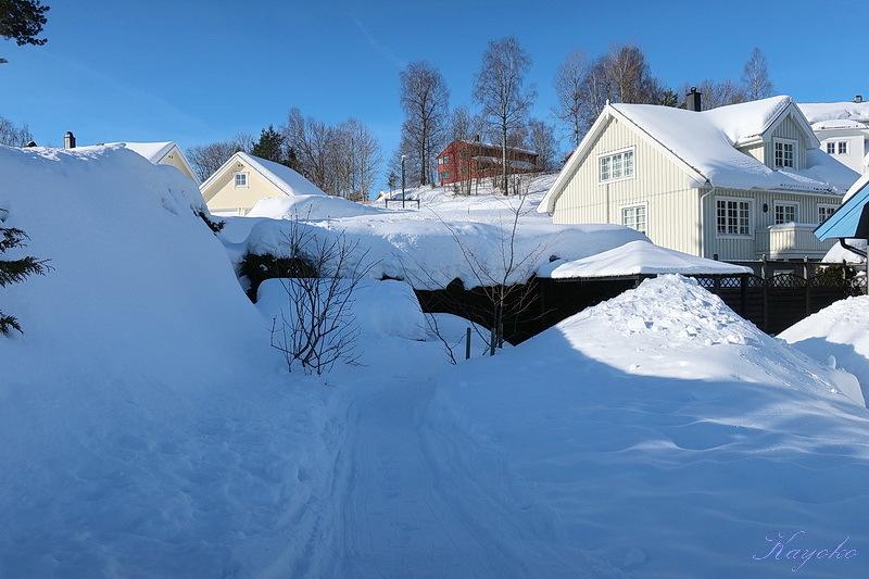 散歩 と 雪かき_a0353839_05300154.jpg