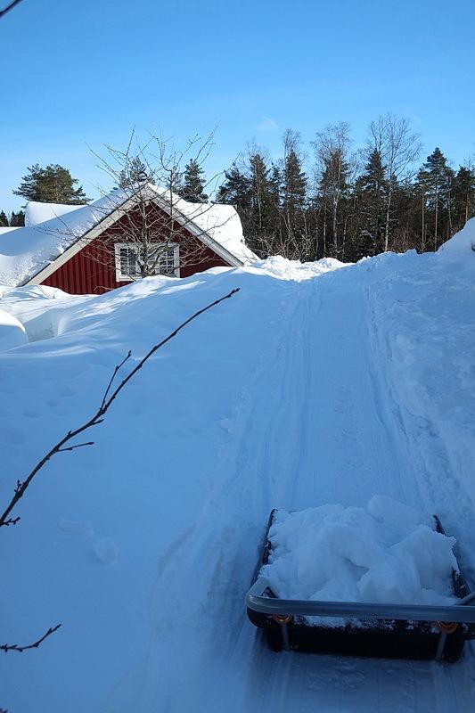 散歩 と 雪かき_a0353839_05304511.jpg