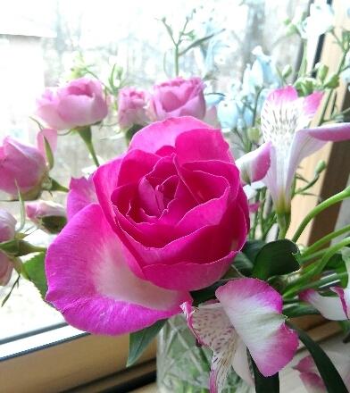 Aコープ祝開店  主婦は花束がお好き - ピースケさんのお留守ばん