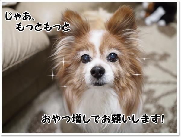 d0013149_00565373.jpg