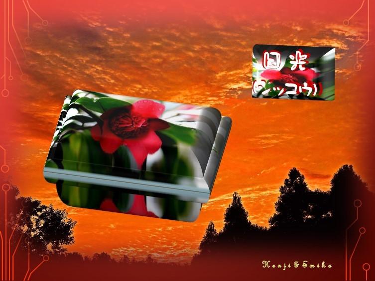 f0214467_10071539.jpg