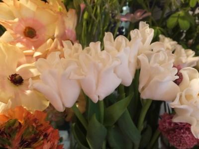 オークリーフ(お花でいっぱいです)_f0049672_10270636.jpg
