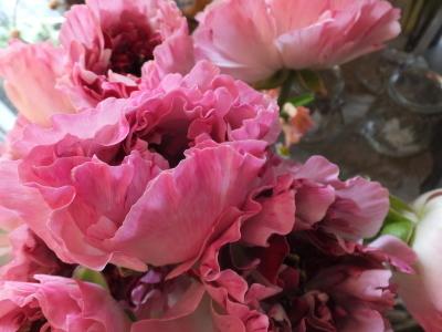 オークリーフ(お花でいっぱいです)_f0049672_10280865.jpg