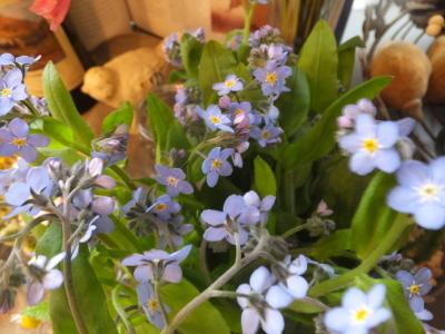 オークリーフ(お花でいっぱいです)_f0049672_10310529.jpg
