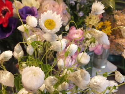 オークリーフ(お花でいっぱいです)_f0049672_10313003.jpg