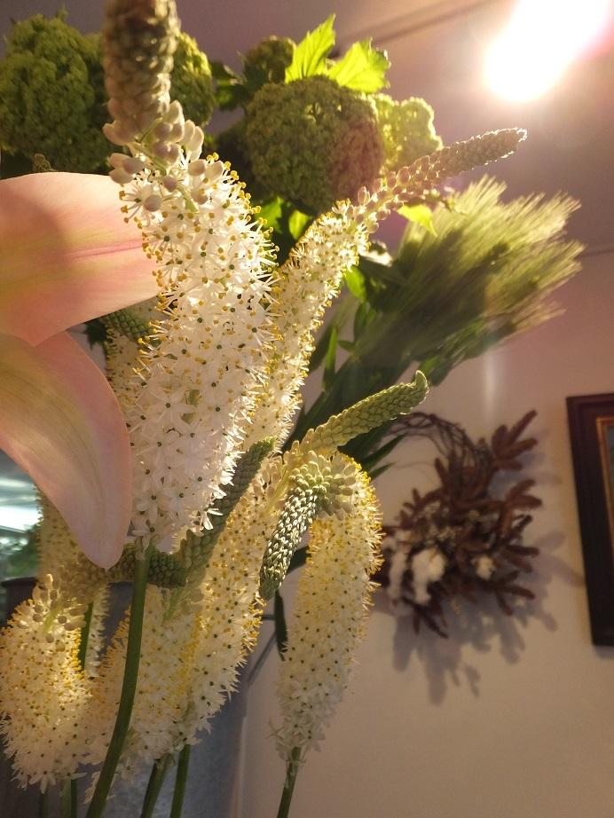 オークリーフ(お花でいっぱいです)_f0049672_10314205.jpg