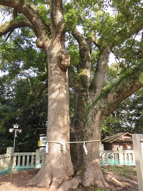 目的はハート型のご朱印 ~冠櫻神社~_f0346196_14495983.jpg