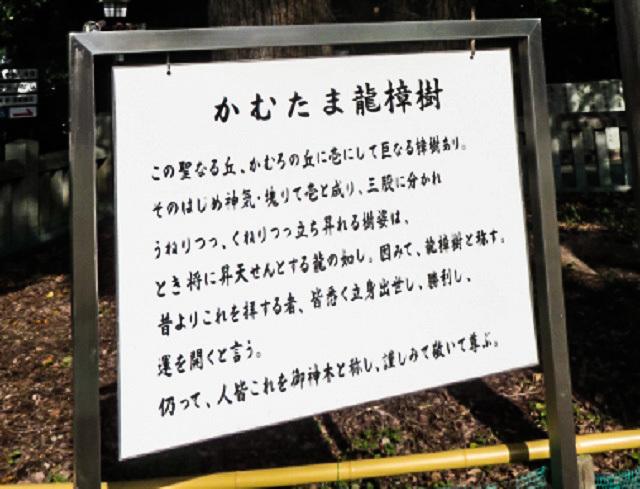 目的はハート型のご朱印 ~冠櫻神社~_f0346196_14500741.jpg