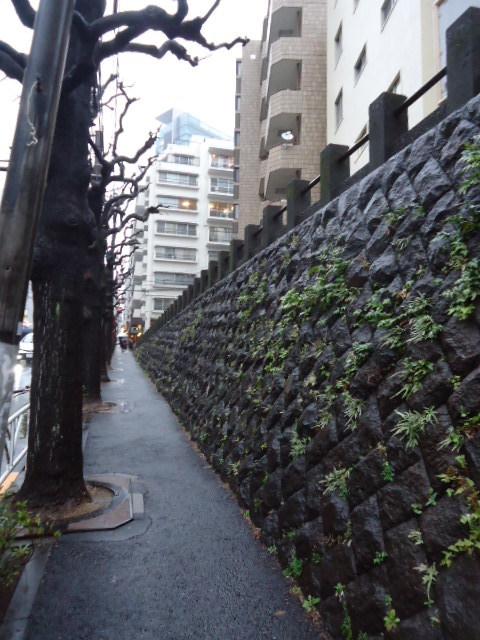 関東6_b0182709_20023048.jpg