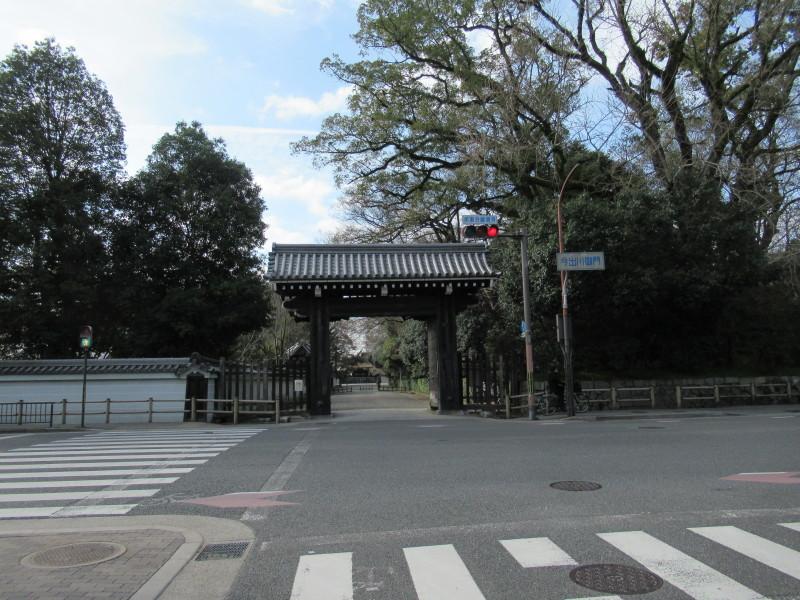 糸しだれ桜が咲き始めた 京都御苑_e0048413_21310159.jpg