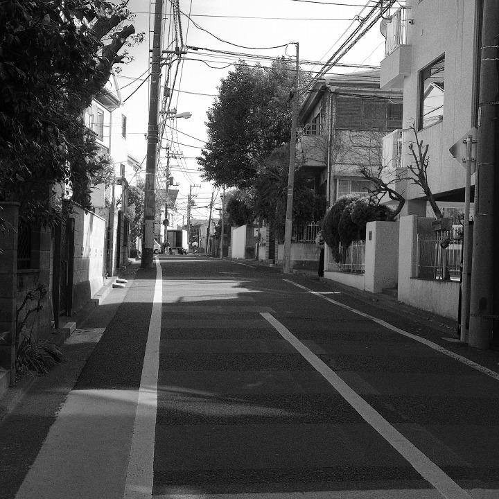 世田谷の古道?を歩く 鎌倉通りその5(沢から沢へ尾根を渡る)_b0058021_18505214.jpg