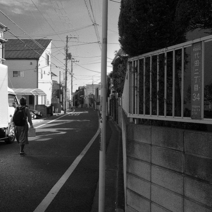 世田谷の古道?を歩く 鎌倉通りその5(沢から沢へ尾根を渡る)_b0058021_18505290.jpg