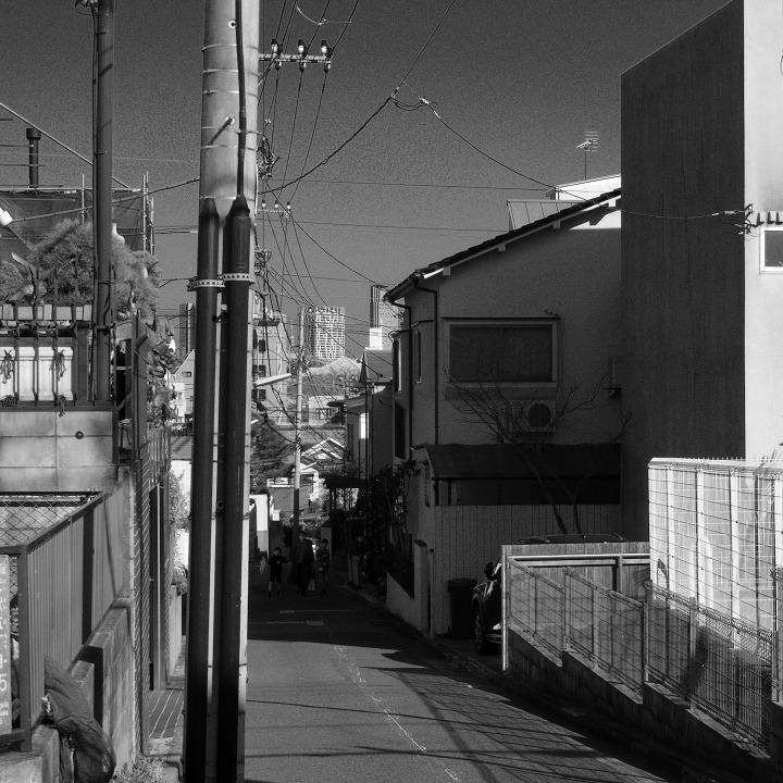 世田谷の古道?を歩く 鎌倉通りその5(沢から沢へ尾根を渡る)_b0058021_18511928.jpg