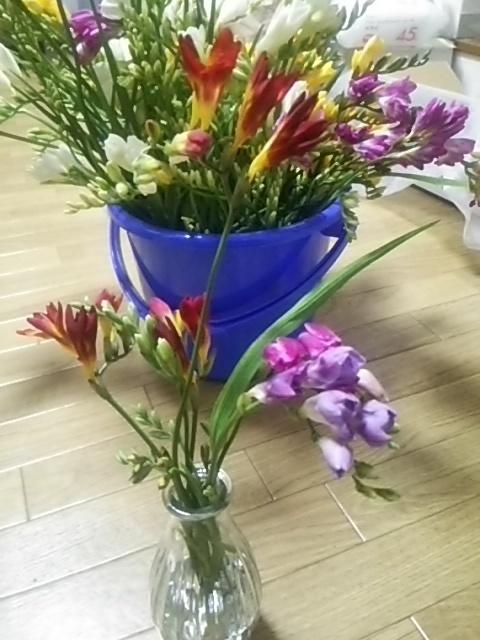 花を飾る。_c0059529_19541106.jpg
