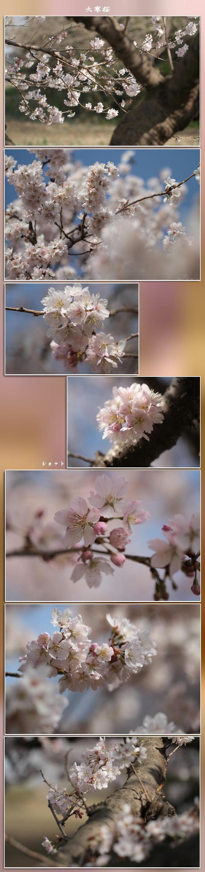 f0164592_19192598.jpg