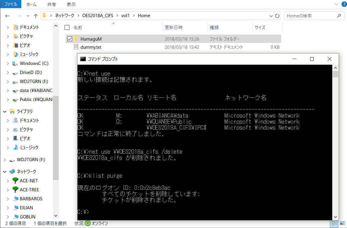 ログオフなしでファイルサーバーとのセッションを切断するには-資格情報の削除_a0056607_13354738.jpg