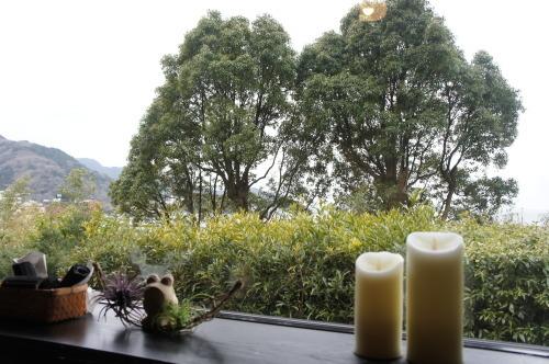 【箱根 伊豆旅行記⑪ 無雙庵枇杷の朝食】_f0215714_16063195.jpg