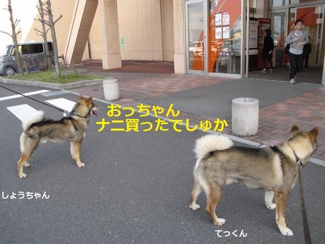 f0143123_10161338.jpg
