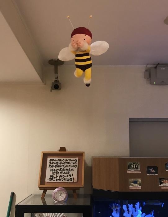 ミツバチ君 病院で飛ぶ_f0395434_00201167.jpg