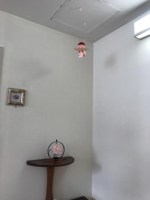 ミツバチ君 病院で飛ぶ_f0395434_00203787.jpg