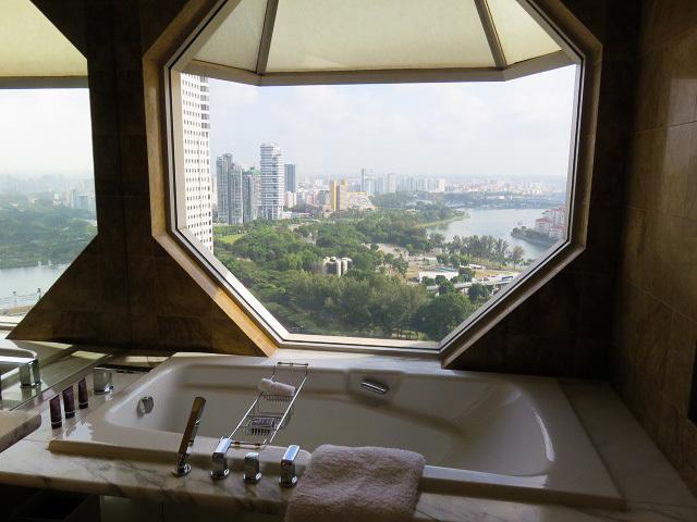 シンガポールの休日 ~ホテル~_f0346196_17102747.jpg