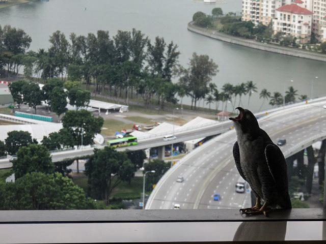シンガポールの休日 ~ホテル~_f0346196_17150183.jpg
