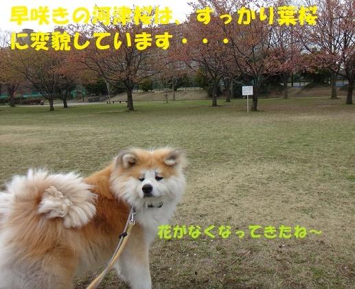 f0121712_08105575.jpg