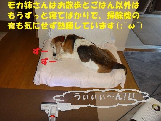 f0121712_09104163.jpg