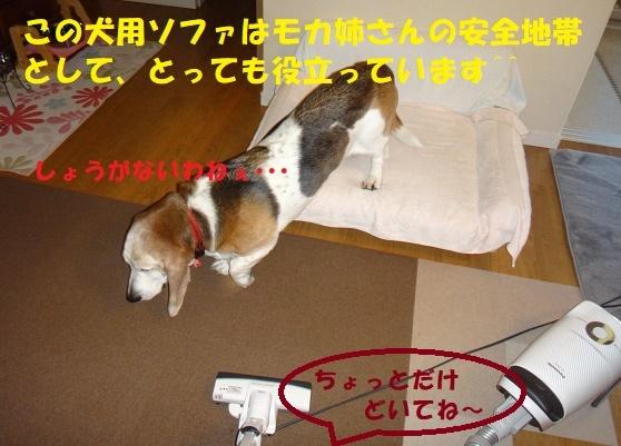 f0121712_09132102.jpg